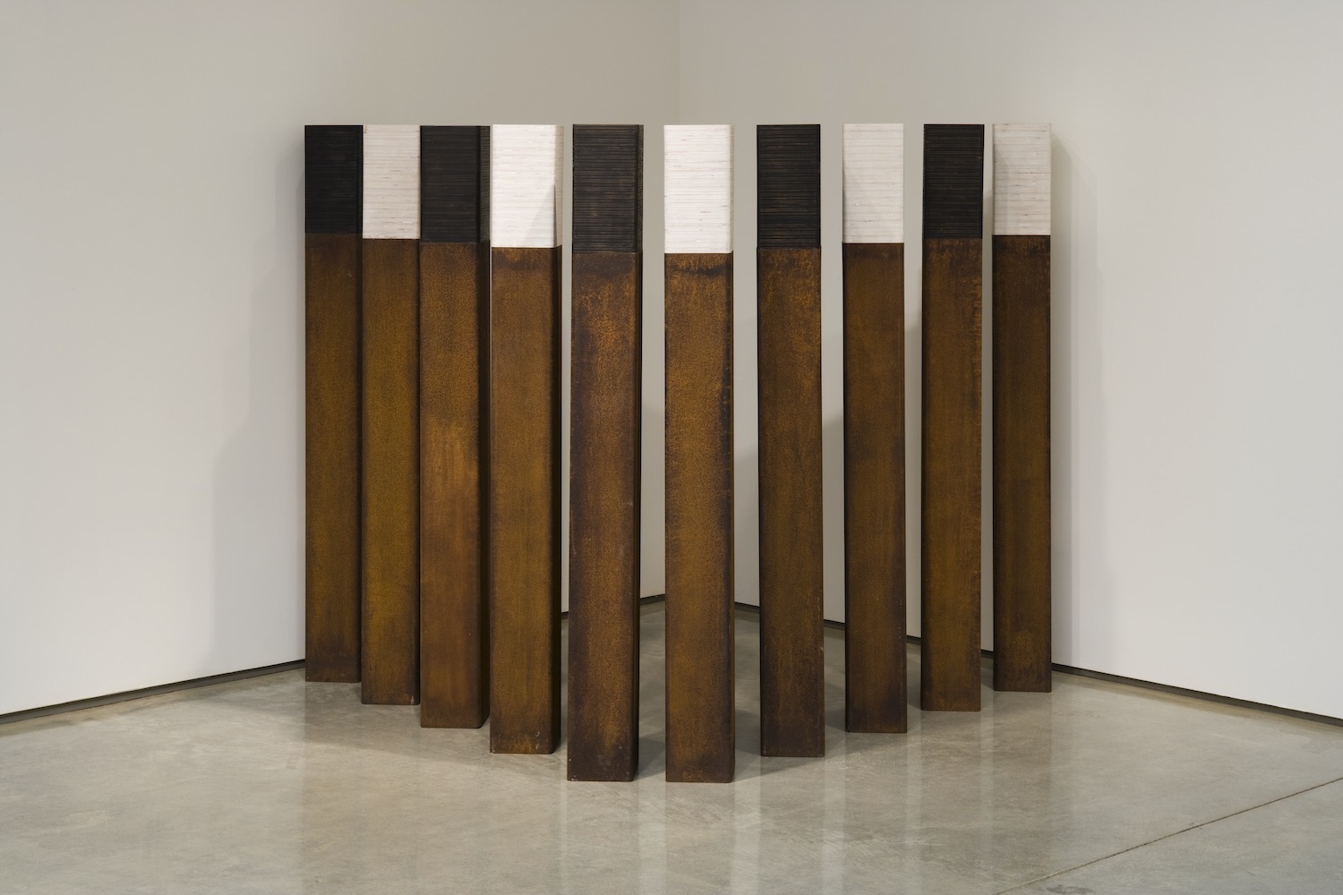 Susan Abbott Martin, Long Division at Roll Up Project